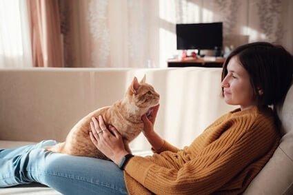 male vs. female cat behavior