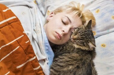 why do cats lay on your face at night?