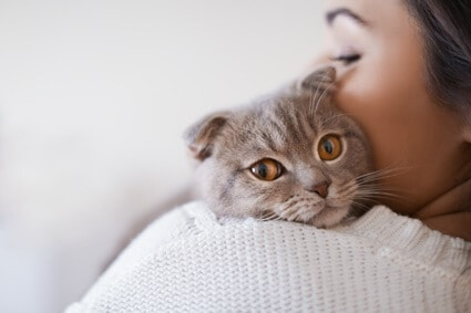 how long do cats recognize their owners?