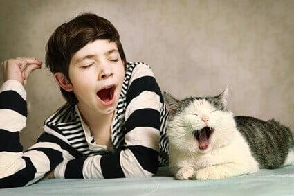 cat yawns when i yawn