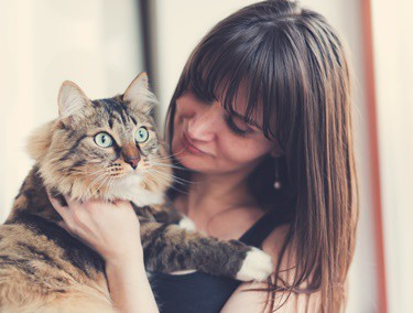 why do cats get attached to one person?