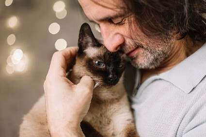 can cats sense danger?