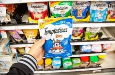why are cats addicted to temptations?