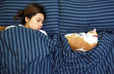 why do cats stare at you while you sleep?