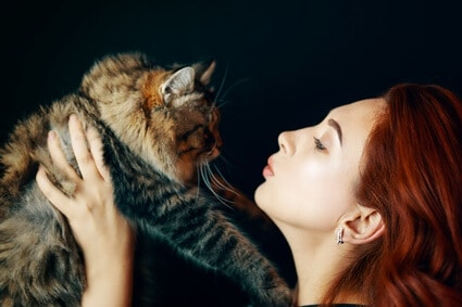 how do cats kiss you?