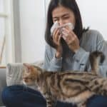 can you be allergic to one cat but not another?