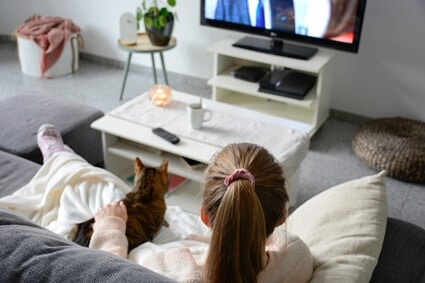 what kind of tv do cats like?