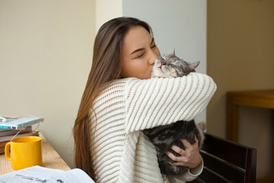 why do cats smell peoples breath?