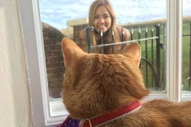 why doesn't my cat come when I call?